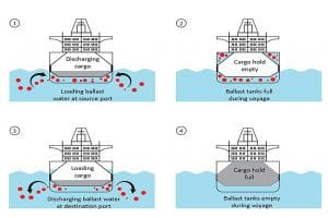 Blog_Ballast_Water_Treatment