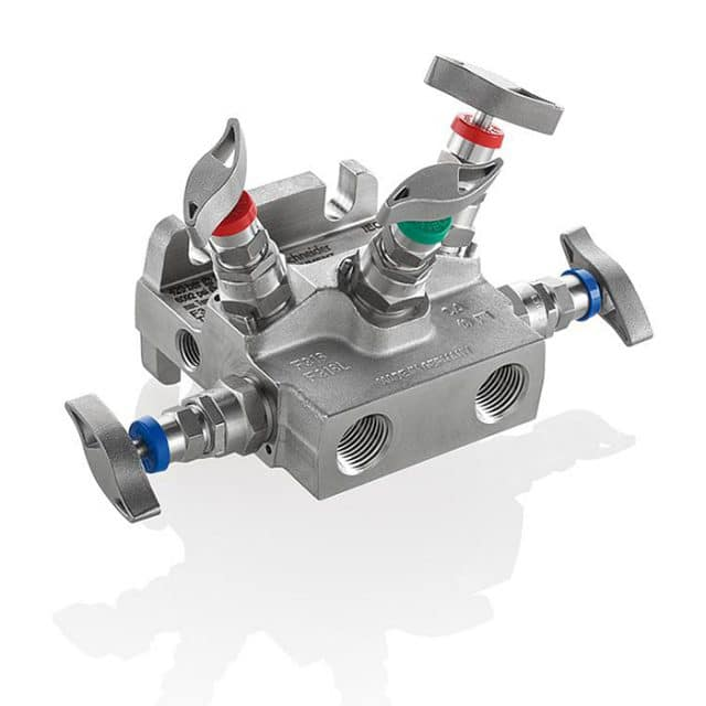 AS-Schneider-Type-T5A-T5B-5-Valve-Manifolds